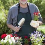 senior-man-gardening.jpg